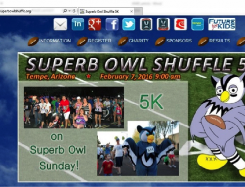 SUPER BOWL VS. SUPERB OWL